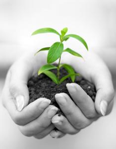Engagement écologie
